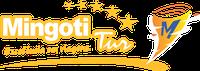 Logo da IRMÃOS MINGOTI